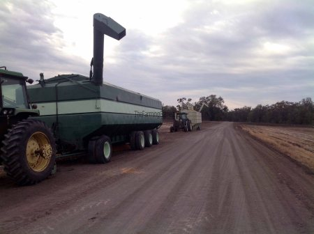 The Big Bin Jammed its Auger